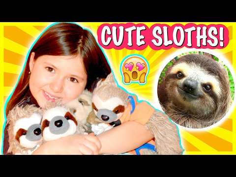 MY SLOTH BABIES | Sedona Fun Kids TV