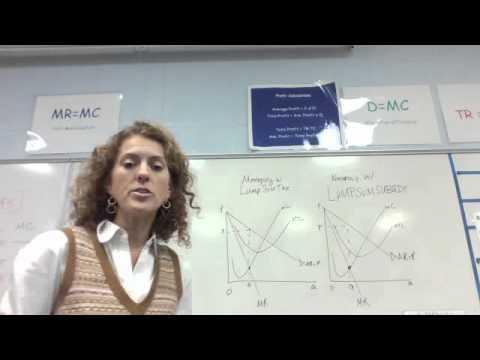 Lump Sum Taxes and Subsidies  Graph