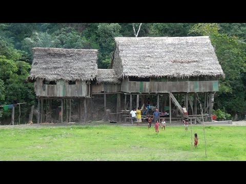 Village Life in the Amazon Jungle
