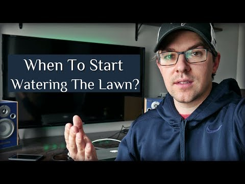 When To Start Watering the Lawn