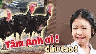 Lam Chi, Tâm Anh, BiMax SỢ PHÁT KHÓC khi có