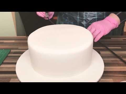 Dinosaur cake decorating - freestyle