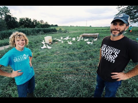 How To QUIT Your JOB & Start A Farm - For $600