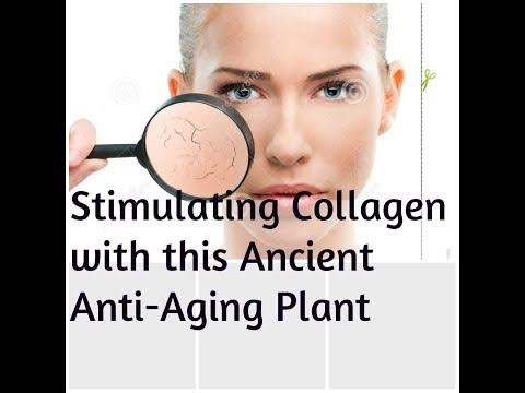 I USE this Anti-Aging PLANT to stimulate Collagen from the inside out! PLUS Product REVIEW