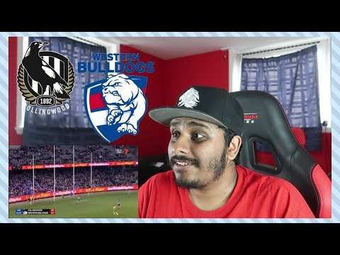 Reaction to AFL Round 10: Collingwood v Western Bulldogs