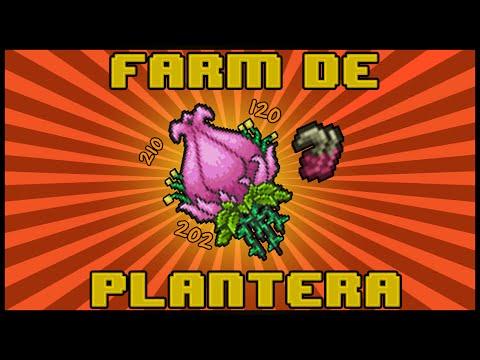 Como Farmar a Plantera (Expert)