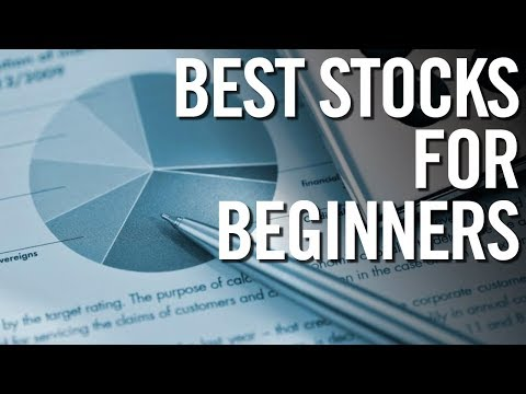 BEST STOCKS FOR BEGINNERS IN 2017 📈 Stock Market For Beginners Guide!