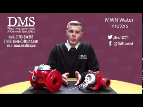The MWN Water Meter from DMS