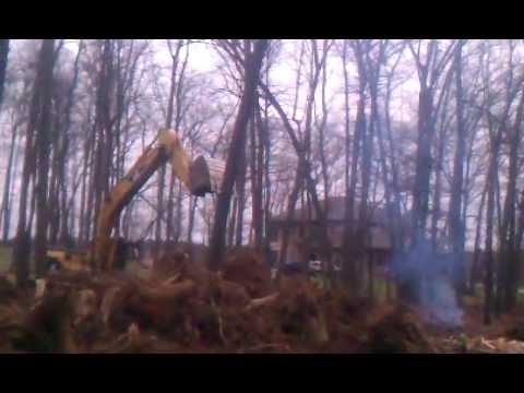 Felling tree with excavator