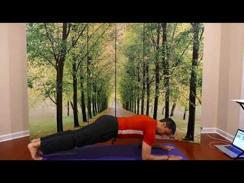 Yoga Plank Pose Challenge for Ab and Core Power