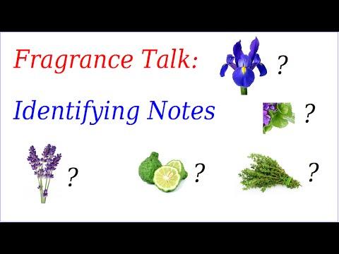 Fragrance Talk: Identifying Notes