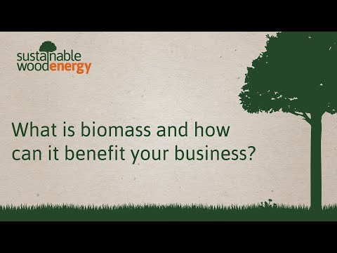 What is biomass and how Sustainable Wood Energy can help your business