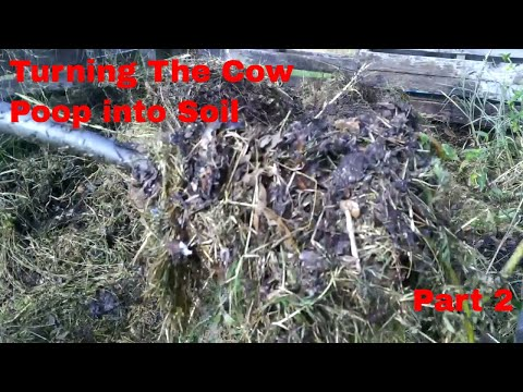 Cow Manure Compost Pile: Turning Poop into Soil