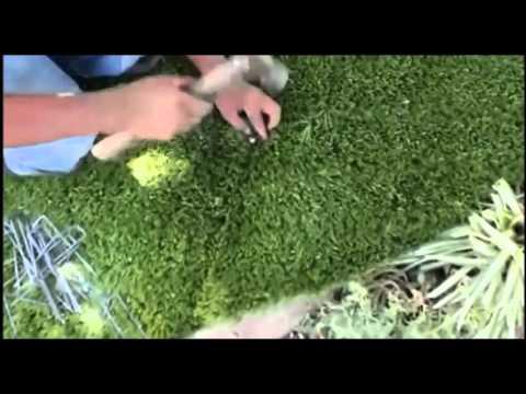 Artificial Grass Seaming Nails vs. Glue