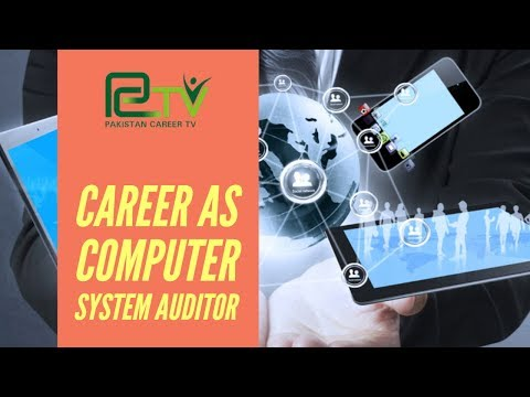 Career as Computer System Auditor