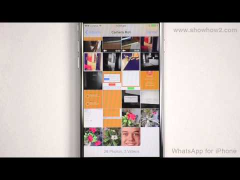 WhatsApp For iPhone - How To Send A Photo