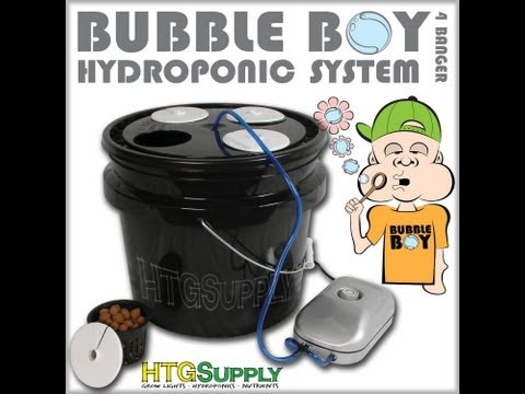 Bubble Boy DWC System - Hydroponics Made Simple