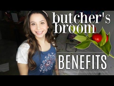 Butcher's Broom Benefits | NATURAL VARICOSE VEINS REMEDY