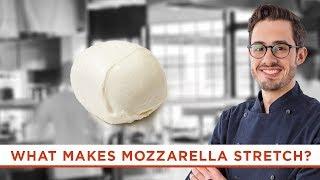 What Makes Mozzarella Cheese Stretchy?