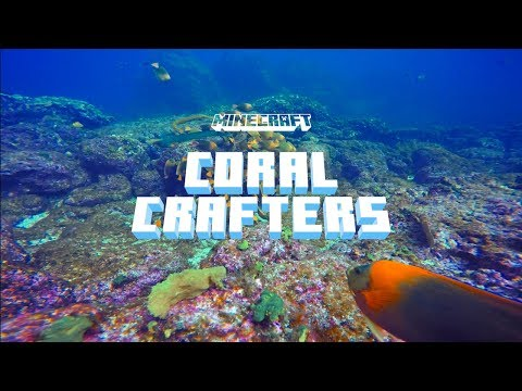 Coral Crafters – How Minecraft Helped the Oceans!