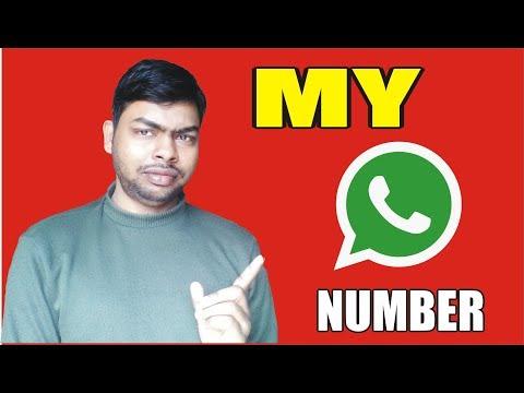 My Whatsapp Number......