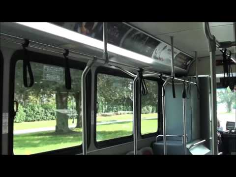 Disney Transport Bus Ride - Caribbean Beach Resort to Epcot