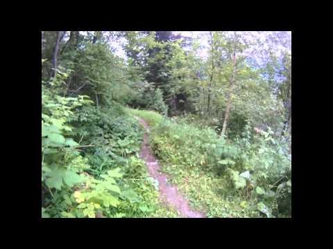 Alps Mountain Biking TRAILER