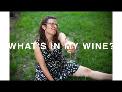 What's In My Wine? : Your Hangover Explained