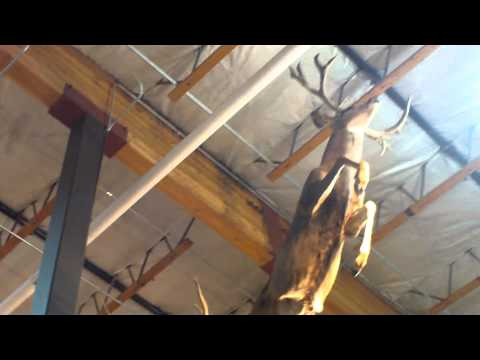 the last video of the wall at cabelas sports store in boise idaho