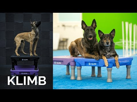 Klimb -Product Review