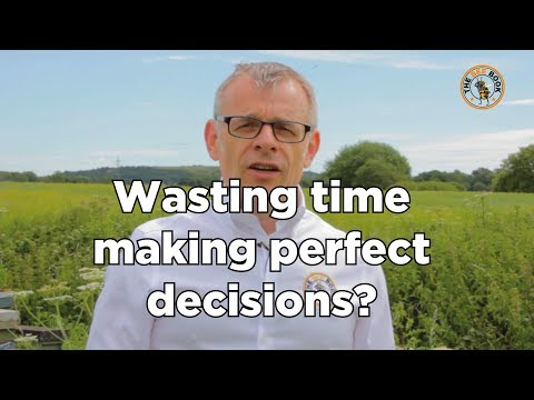 The Bee Book - Wasting time making perfect decisions?