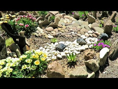 MY Front Garden Tour Spring Update   Liz Kreate