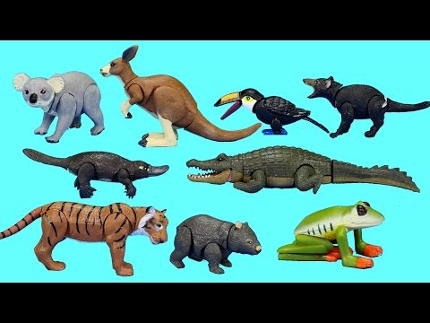 Rainforest Jungle and Australian Wild Animals Toys Collection - Learn Animal Names