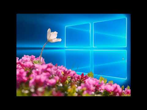 Why Windows 10 was delayed due to a bug found by insiders