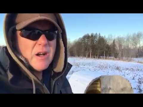 How do pigs survive the winter? A Farmers Life