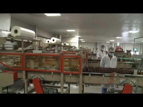 Free Zones in UAE : Ras Al Khaimah Investment Authority  RAKIA