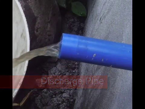 swine wastewater treamtment facility