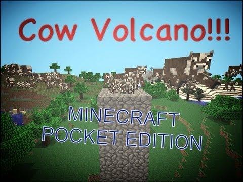 Minecraft Pocket Edition- Cow Volcano!