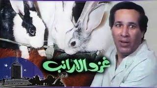 الفيلم العربي: غزو الأرانب