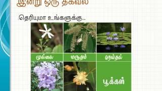 Download tamil movie Video