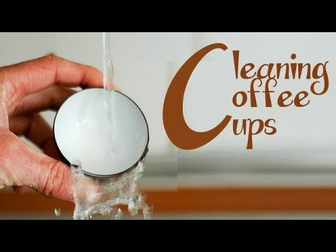 Remove coffee stains from cups | Ventuno Kitchen Tips