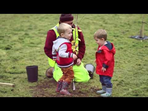 Northend Community Orchard Day