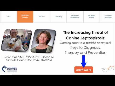 The Increasing Threat of Canine Leptospirosis