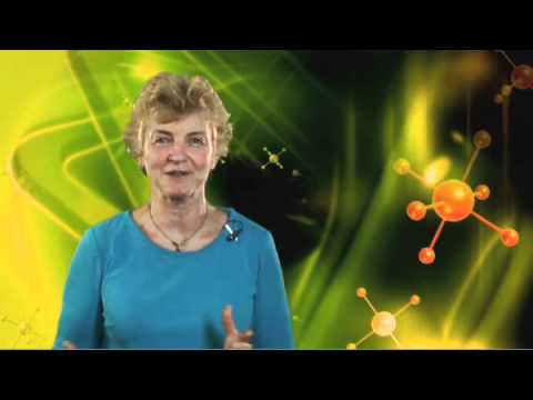 NLP Practitioner Certification Training with Lynda Dyer