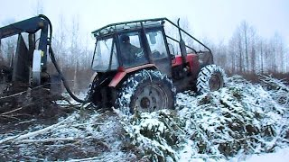 Belarus Mtz 1025 forestry tractor logging in winter forest