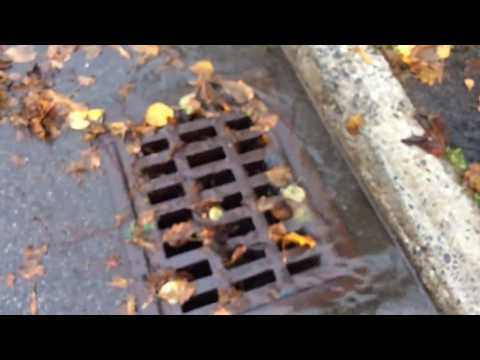 cleaning storm drain lid
