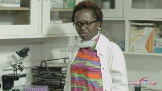 Break it down for me! Kansiime Anne.  African Comedy