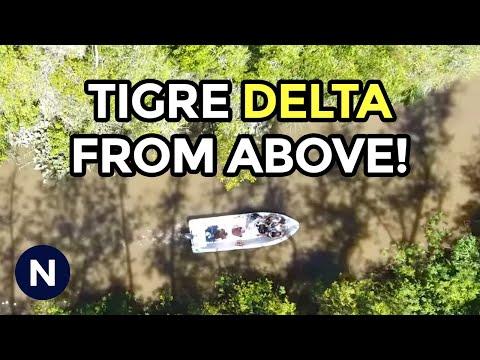 A Drone Flight Over the Delta in Tigre, Argentina