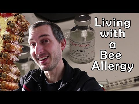 Allergic to bees... and I'm a beekeeper