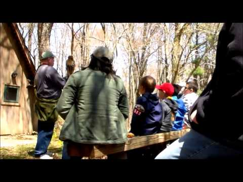 Mohican Wildlife Weekend Ohio Bird Sanctuary
